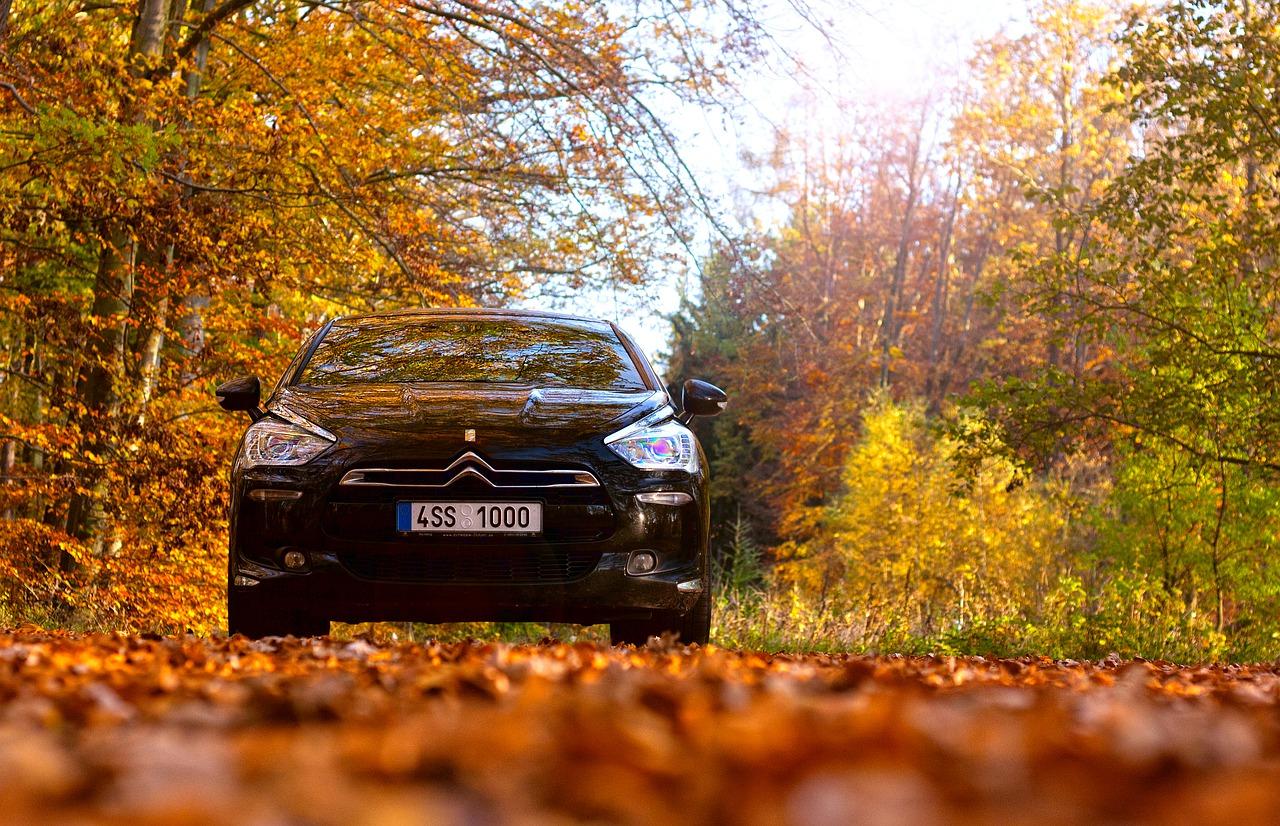 Citroën DS, eines der beliebtesten Modelle dieser französischen Automarke